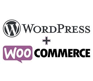 , Create an Ecommerce Website